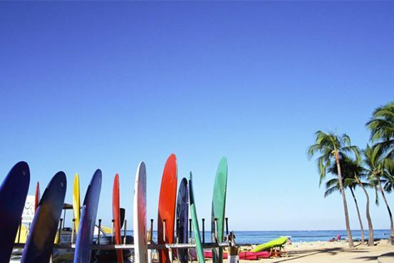 surfvakantie tips